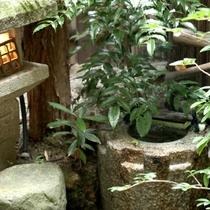 【和室10畳】都忘れ 小さなお庭付きのお部屋です。