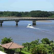 仲間川河口の風景