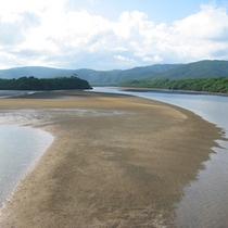 仲間川からの風景