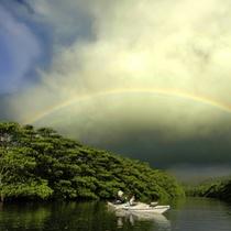 「虹が出た!」