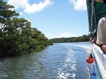 西表ジャングルの中をゆっくりと進む仲間川遊覧