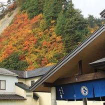 【周辺景観】例年紅葉の見頃は、10月下旬~11月上旬です。