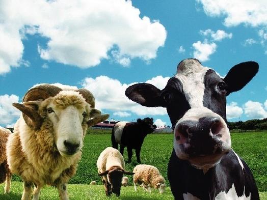 【二食付】≪マザー牧場入園券付≫自然満喫!かわいい動物に癒されよう♪