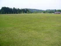 宿より2キロ、天然芝のひろーい公園