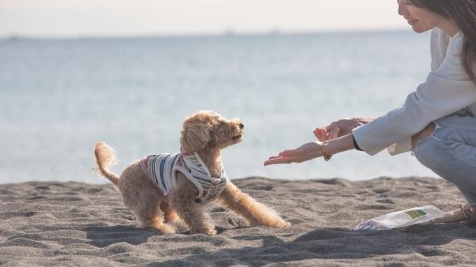 愛犬と一緒に湘南フレンチを堪能♪ NEWプランで贅沢に泊まれる☆1泊2食付