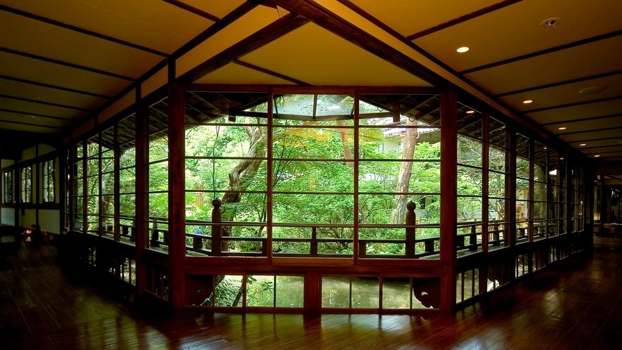 【館内回廊】大きな窓から望む修善寺の自然、昼は暖かい日差し、夜は美しいライトアップを…
