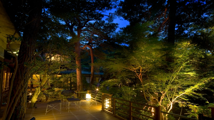 【中庭テラス】昼間とは違う雰囲気を見せる夜のライトアップ、温泉旅館でロマンチックなお時間を