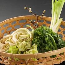 《夕食 春季》山の幸♪山菜料理でおもてなし