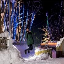 【雪国のイルミネーション☆横手市浅舞】 槻の木光のファンタジー