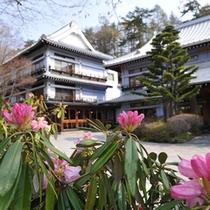 石楠花が咲くエントランス