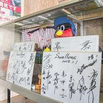 *【館内一例】ヤクルト選手のサインやユニフォームも飾っています。ぜひご覧下さい!
