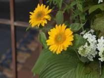 玄関先の生花