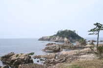 越前海岸 亀島