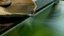 源泉かけ流しのアルカリ性単純硫黄泉