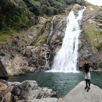 【大川(おおこ)の滝】九州一の高さを誇り「日本の滝百選」にも選ばれています!