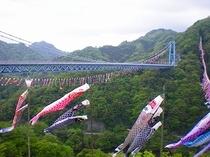 竜神大吊橋 (当館よりお車で15分)