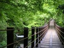 汐見滝と吊橋 (当館よりお車で15分)