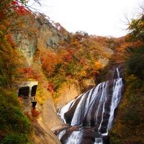 袋田の滝(秋)