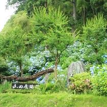 元湯 山田屋旅館の入口