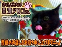 TOP・広告用-クロコ(文字有り)