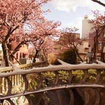 期間中は大道芸やバンド演奏、桜茶無料サービスなど色々なイベントも催されております