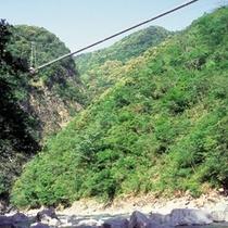 ◇照葉大吊橋(お車で約45分)