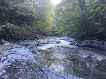 【裏磐梯 中津川渓谷】自然がつくりだした造形美が楽しめる。会津で最も紅葉が早いエリアでもある。