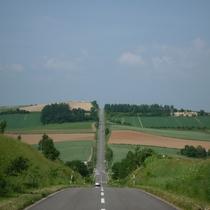 【車で約35分】ジェットコースターの路