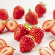 4・5月のウェルカムスイーツはいちごフェア!甘くてかわいい真っ赤ないちごをお楽しみください。