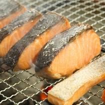 ペラペラの鮭とは一味違います!脂ののり方が抜群!