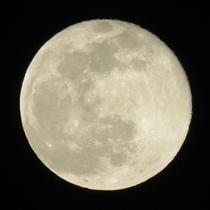 5月26日はスーパームーンの皆既月食です!