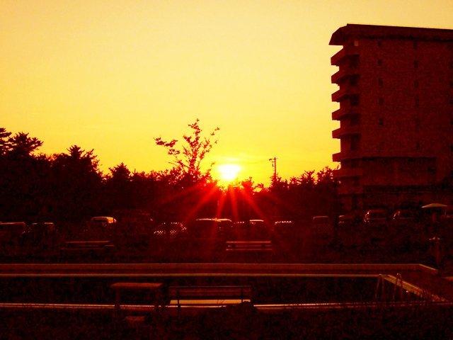 年に1〜2回しか見れない夕陽