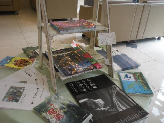 奄美の本コーナー
