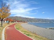 諏訪湖畔:秋
