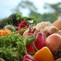 【淡路島の地の新鮮野菜をたっぷりと】