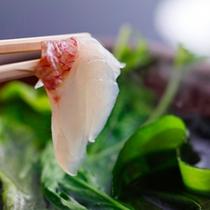 【桜鯛のしゃぶしゃぶ鍋】