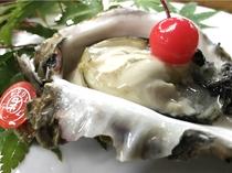宿前の海で育つ、あだこ岩牡蠣は三重ブランド!