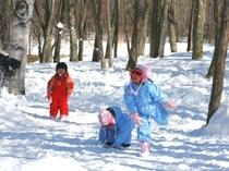 そり滑りに飽きたら、雪遊びも◎