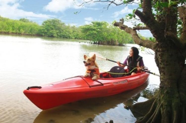 愛犬と一緒にカヌーツアー