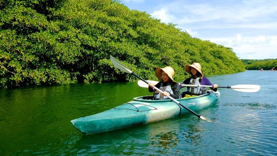 *広大なマングローブの川をカヌーで。安定感のある2人乗りカヌーです。