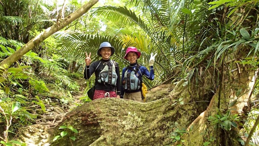 *亜熱帯のジャングルをトレッキング