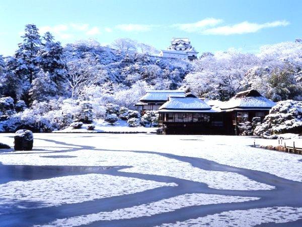 彦根城(冬)