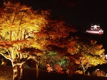 錦秋の玄宮園ライトアップ(彦根城内) 2017年11月18日~12月3日