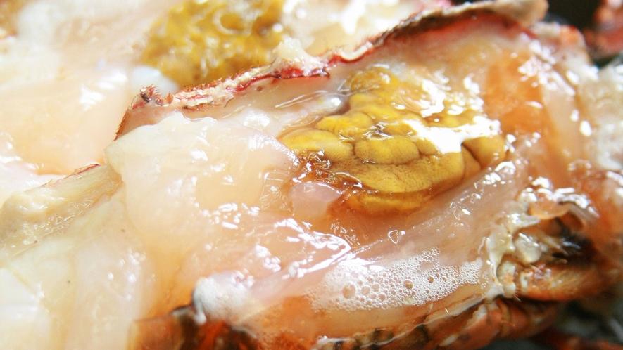 ・三重県を代表する海の幸、伊勢海老料理をご堪能ください