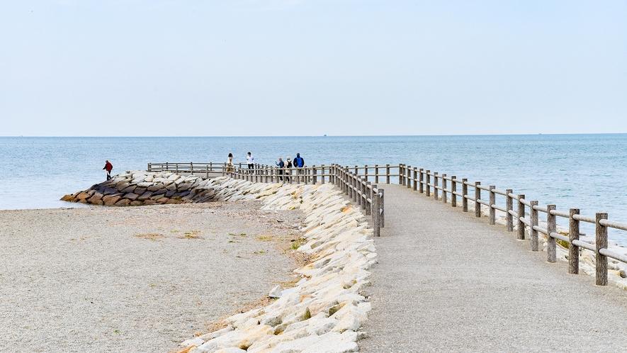 *【周辺】当館の横の海岸通りをお散歩できます。