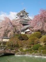 月岡城の桜