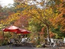 秋の庭 メインテラス