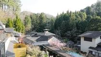 *山水園は和の別荘スタイル。緑豊かな山林に宿泊棟が立ち並ぶ