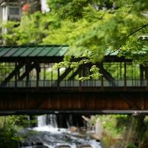 【廊下橋】屋根付き廊下橋は国の有形文化財