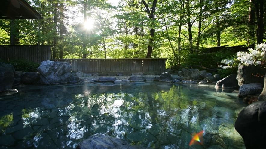 【杜の湯・露天風呂】四季の営みを感じながらお入りいただけます